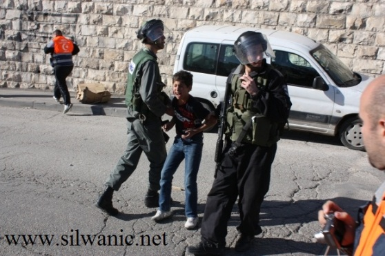 Israeli forces arrest a 10 year old child in Silwan. Photo: Silwanic.net