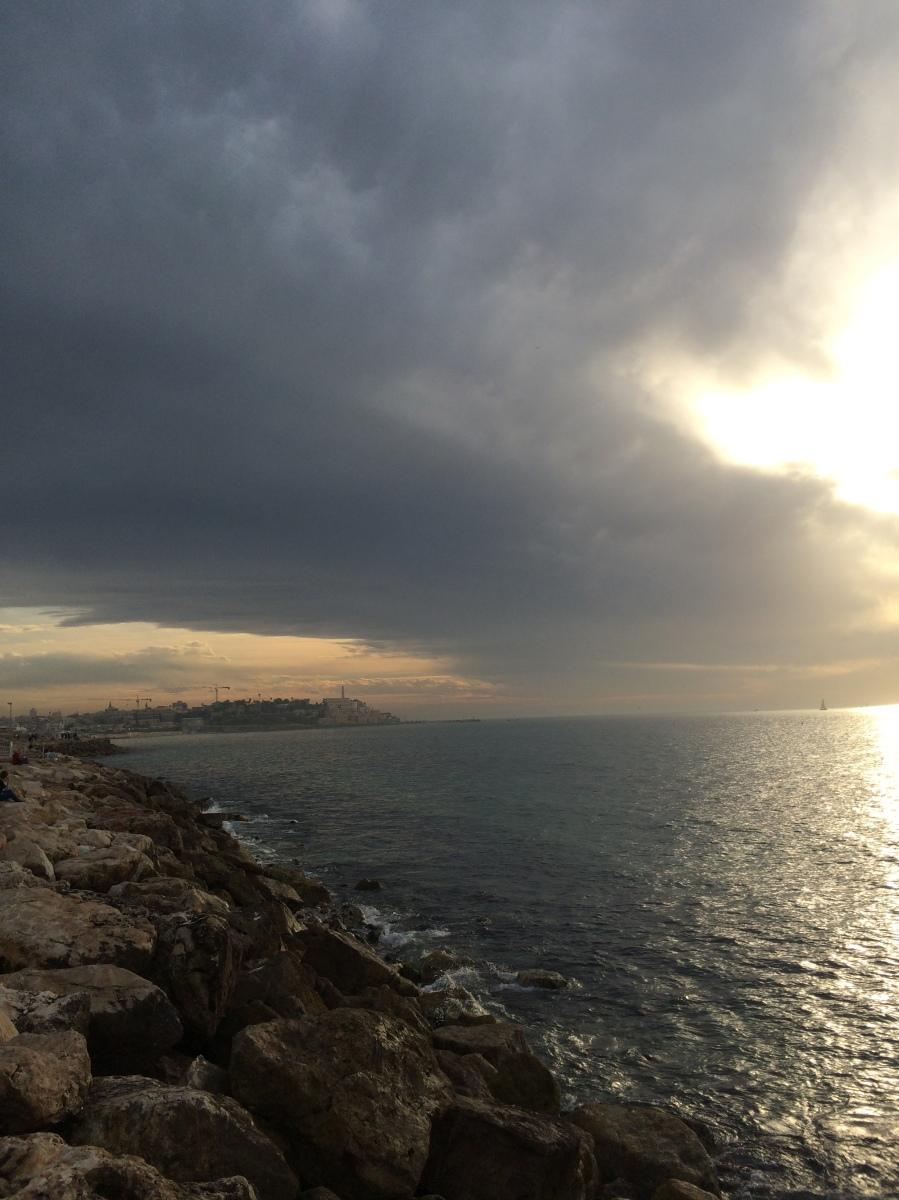The Same Sea (by Yuval Orr)